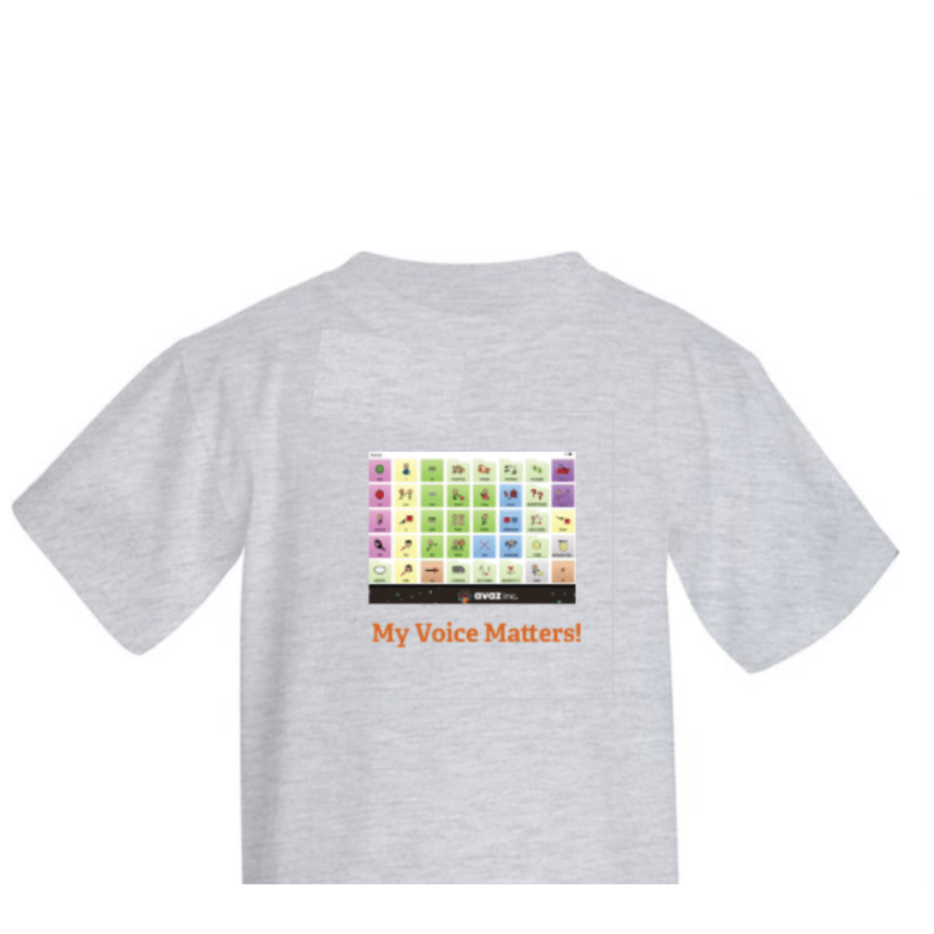 Aided Language Input with Tshirt